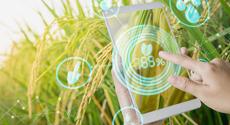 刘大成:农业智慧供应链